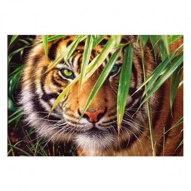Puzzle 260 Piezas Tigre Bosque Esmeralda